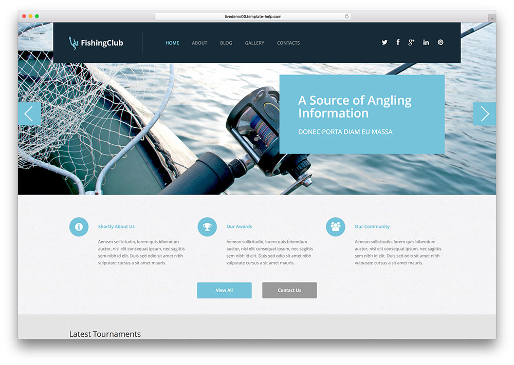 Sandandstarfish Furuthemes WordPress Theme